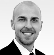 David Hahn, Consultant